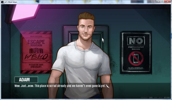Free gay adult game